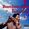 Bamboo Flute Collection - Various Artists
