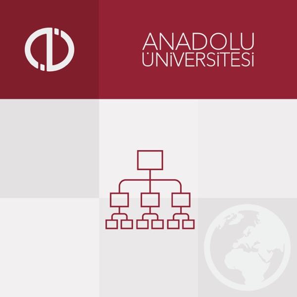 Örgüt Kuramı (2013-2014)