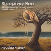 Sleeping Bee - This is Not to Be, When I Saw You