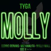 Molly (feat. Cedric Gervais, Wiz Khalifa & Mally Mall) - Single