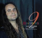 9 Guitarras