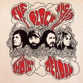 The Black Angels - Don't Play With Guns
