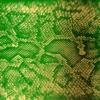 Money Green Viper, Zackey Force Funk