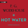P.G. Wodehouse - Hot Water (Unabridged)  artwork