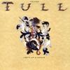 Jethro Tull - Steel monkey