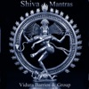 Consciousness and Bliss Shiva Mantras Om Namah Shivaya So Ham and Upanishad Prayer
