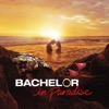 Bachelor in Paradise, Season 3 - Synopsis and Reviews