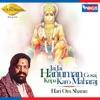 Jai Jai Hanuman Gosai Kripa Karo Maharaj Single