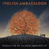 The Polish Ambassador - Camino Rojo (feat. Lulacruza)