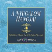 A Nyugalom Hangjai, Vol. 4 (feat. Holló József, Molnár László & Popper Péter)
