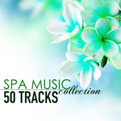 Spa Music Collection  50 Tracks Of Soothing Sounds Of Nature For Wellness Centers And Hotel Lounge-Spa Music