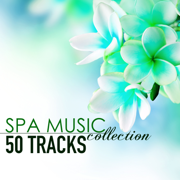 Spa Music Collection - 50 Tracks of Soothing Sounds of Nature for Wellness Centers and Hotel Lounge - Spa Music - Spa Music