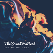 TheSoundYouNeed, Vol. 2 - Various Artists - Various Artists