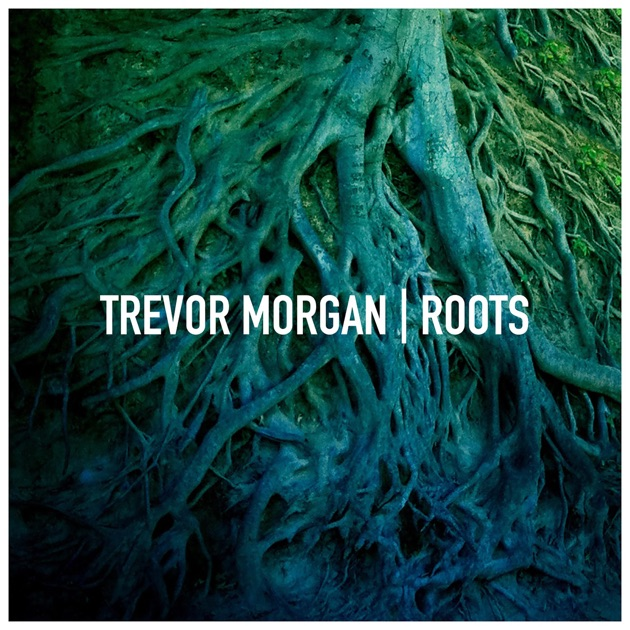 The blessed and the broken by trevor morgan on itunes the blessed and the broken by trevor morgan on itunes stopboris Choice Image