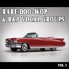 Rare Doo-Wop and Rhythm & Blues Vocal Groups, Vol. 5