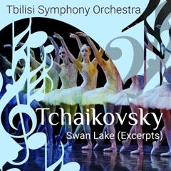 Swan Lake, Op. 20, Act II, No. 12: Scène. Allegro moderato assai quasi andante