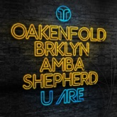U Are (feat. BRKLYN & Amba Shepherd) - Single