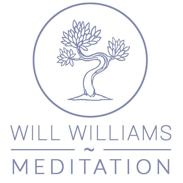 Will Williams Meditation
