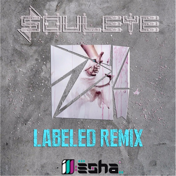 Labeled (Remix) [feat. Ill-Esha] - Single