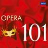 101 Opera - Various Artists