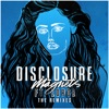 Magnets (feat. Lorde) [The Remixes] - EP ジャケット写真