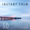 Instant Calm: 50 Healing Songs for Meditations to Quiet Your Mind, Yoga Music for Body Balance Problems, Train Your Brain to Relax, Sleep Therapy, Spa, Massage, Stress Release - Various Artists