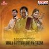 Viola Gottuvadhyam Veena