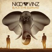 Am I Wrong Nico & Vinz - Nico & Vinz
