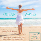 Ocean Waves  Healing Beach Sounds For Relaxation, Meditation, Deep Sleep, Studying, Concentration, Film-Life Sounds Nature