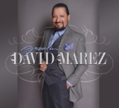 David Marez - Le Meneas