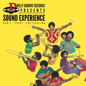 Sound Experience - Devil with the Bust