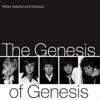 The Genesis of Genesis ジャケット写真