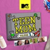 Teen Mom, Vol. 3 wiki, synopsis