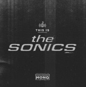 The Sonics - Leaving Here
