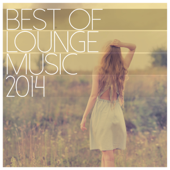 Best of Lounge Music 2014 - 200 Songs