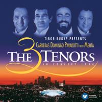 José Carreras, Plácido Domingo, Luciano Pavarotti, Los Angeles Music Center Opera Chorus, Los Angeles Philharmonic & Zubin Mehta - The Three Tenors in Concert, 1994 artwork