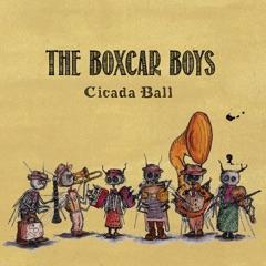 Cicada Ball