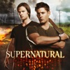 Supernatural, Season 8 wiki, synopsis