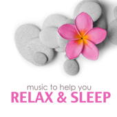 Relax & Sleep - Meditation Relax Club