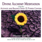 Divine Alchemy Level One: Activate and Balance Your 15 Power Centers
