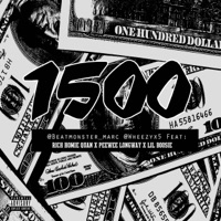 1500 (feat. Rich Homie Quan, Peewee Longway & Lil Boosie) - Single Mp3 Download