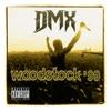 Live At Woodstock '99, DMX