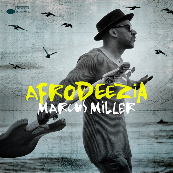 Marcus Miller - We Were There