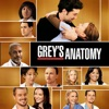 Grey's Anatomy, Season 5 wiki, synopsis