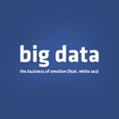 Big Data - The Business of Emotion (feat. White Sea)