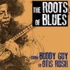 The Roots of Blues From Buddy Guy To Otis Rush