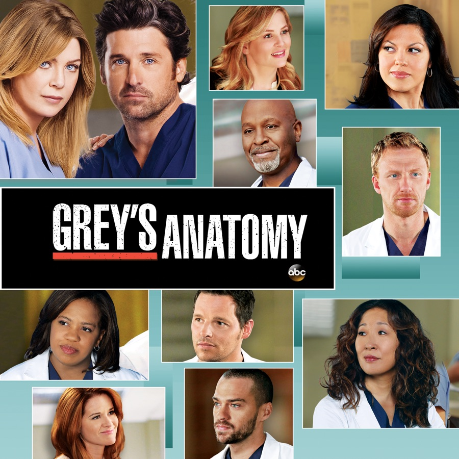 Grey\'s Anatomy, Season 9 wiki, synopsis, reviews - Movies Rankings!