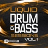 Liquid Drum & Bass Sessions, Vol. 1
