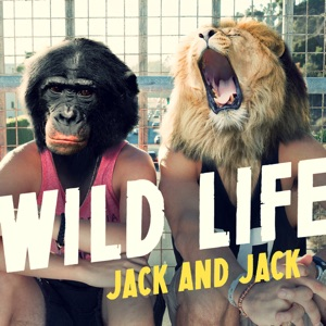 Wild Life - Single Mp3 Download