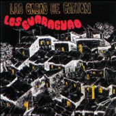 Casas de Cartón - Los Guaraguao